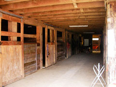 Spacious stalls and Arena